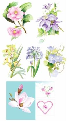 elegant watercolor flowers vector free download.