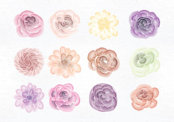 Vector Watercolor Flowers.