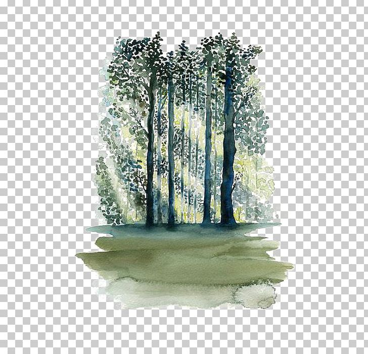 Watercolor Painting Paper Tree Forest PNG, Clipart, Art.