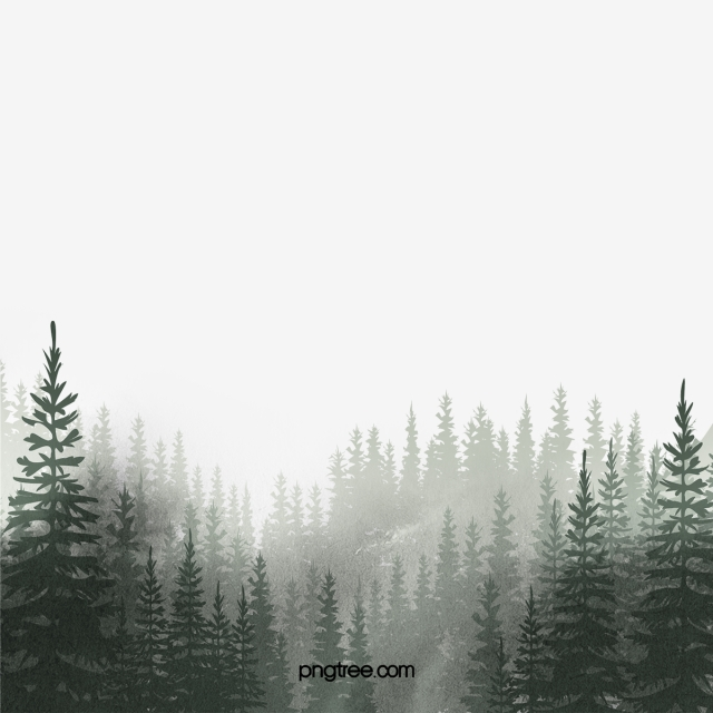 Forest PNG Images, Download 14,904 Forest PNG Resources with.