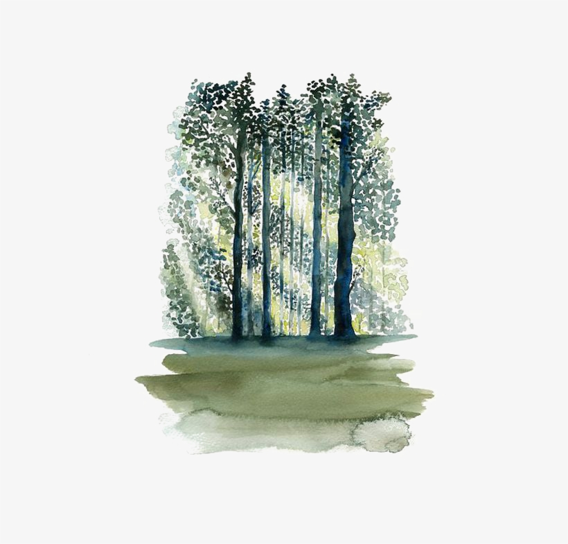 Painting Paper Tree Forest Transprent.