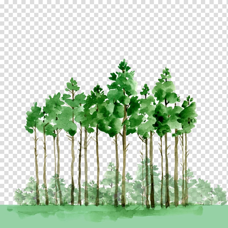 Green trees illustration, Watercolor painting Oil paint.