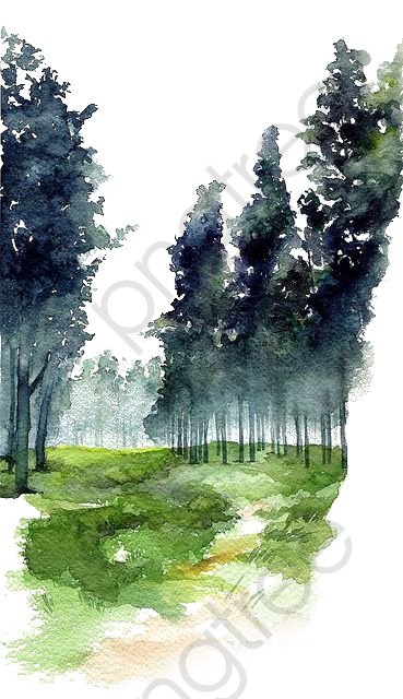Watercolor, Watercolor Clipart, Watercolor Forest, Drawing.