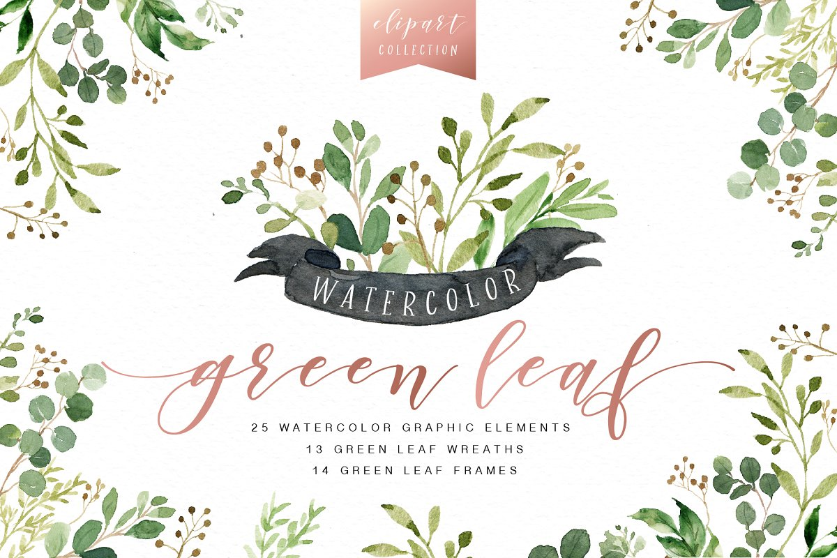 Watercolor Green Leaf Clip Art ~ Illustrations ~ Creative Market.