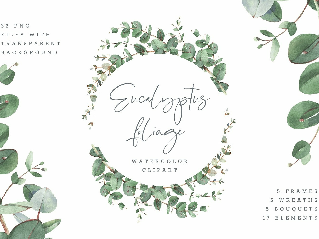 Eucalyptus Foliage watercolor by Graphics Collection on Dribbble.