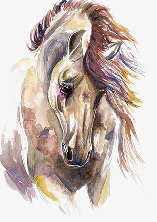Watercolor Horse PNG Images, Watercolor Horse Clipart Free.