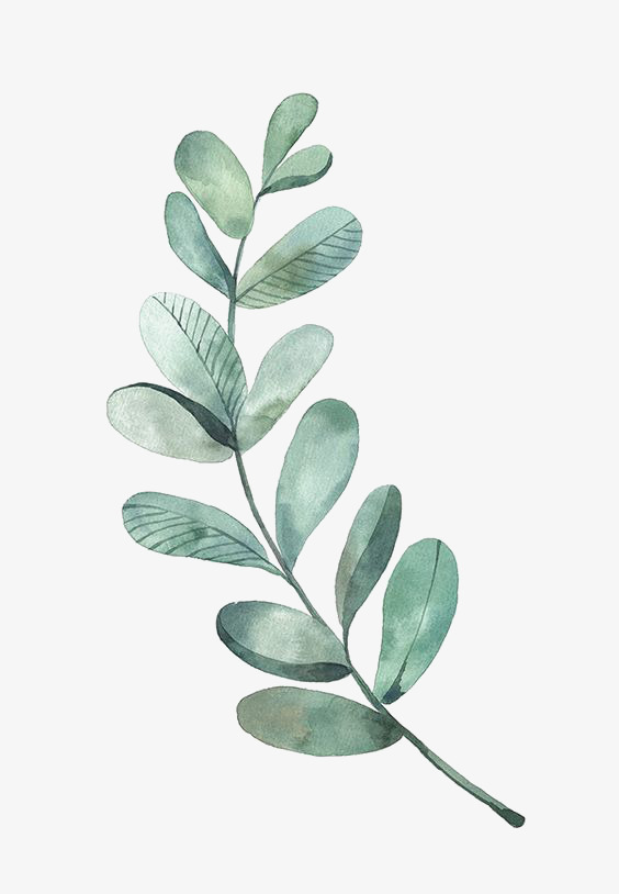 Green Leaves, Watercolor Leaves, Fresh, Literature And Art.
