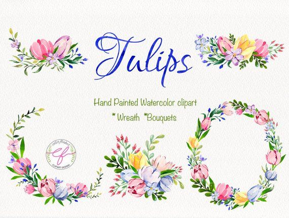Tulips watercolor Clipart ,tulip wreath clipart ,Floral.