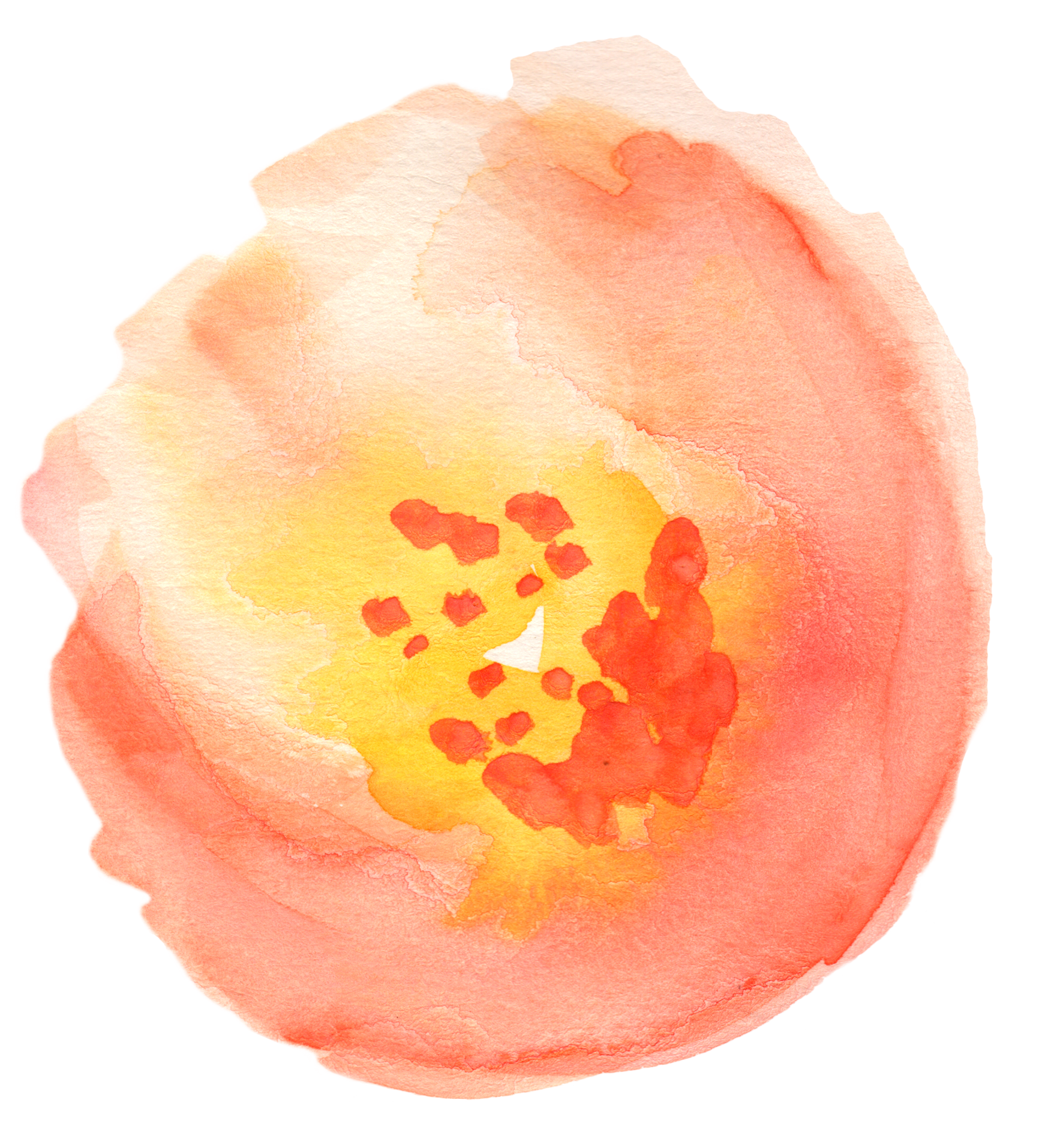 Peaches clipart watercolor, Peaches watercolor Transparent.