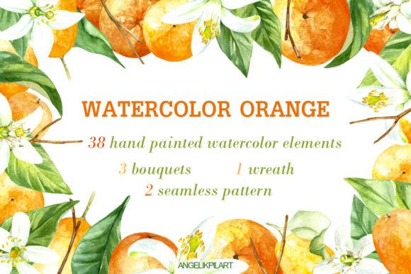 Watercolor clipart orange fruit set.