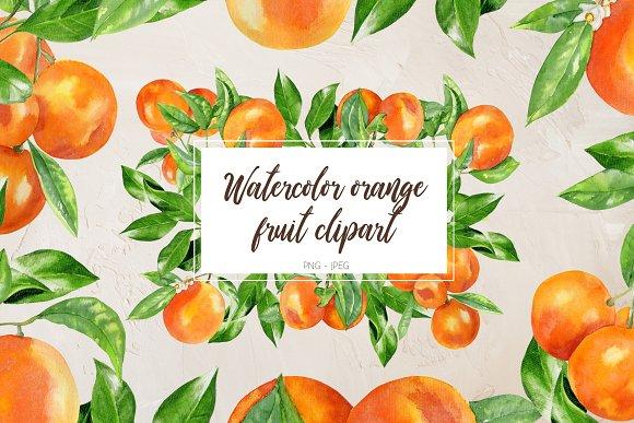 Watercolor orange fruit clipart.