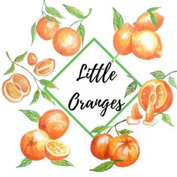 Watercolor oranges clip art, Oranges Illustration, Hand painted watercolor.