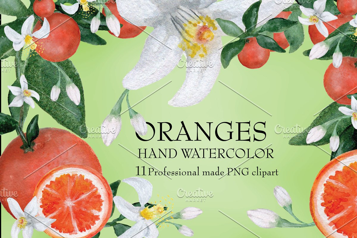 Watercolor Oranges with flower/leafs.