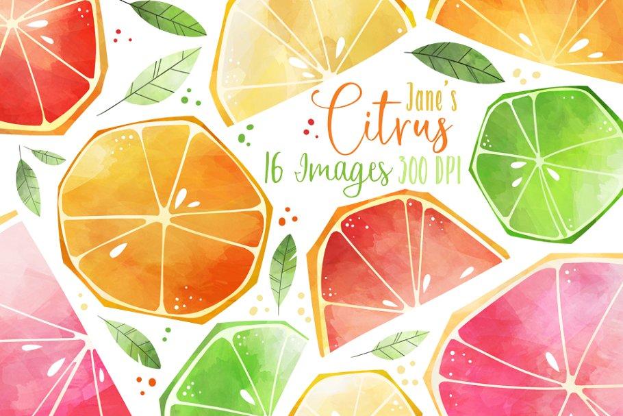 Watercolor Citrus Slices Clipart.