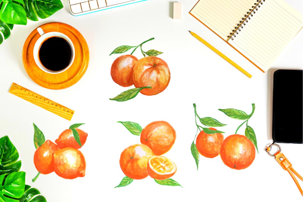 Watercolor oranges clip art, Oranges Painted Illustrations.