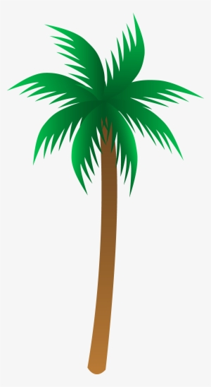Palm Tree Vector PNG Images.