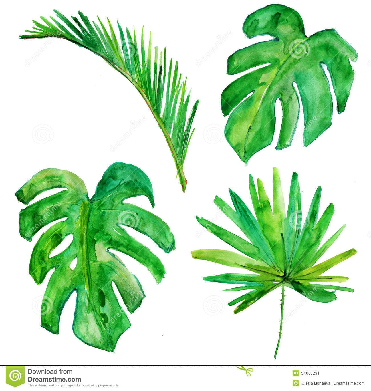 Palm Tree clipart paint #8 in 2019.