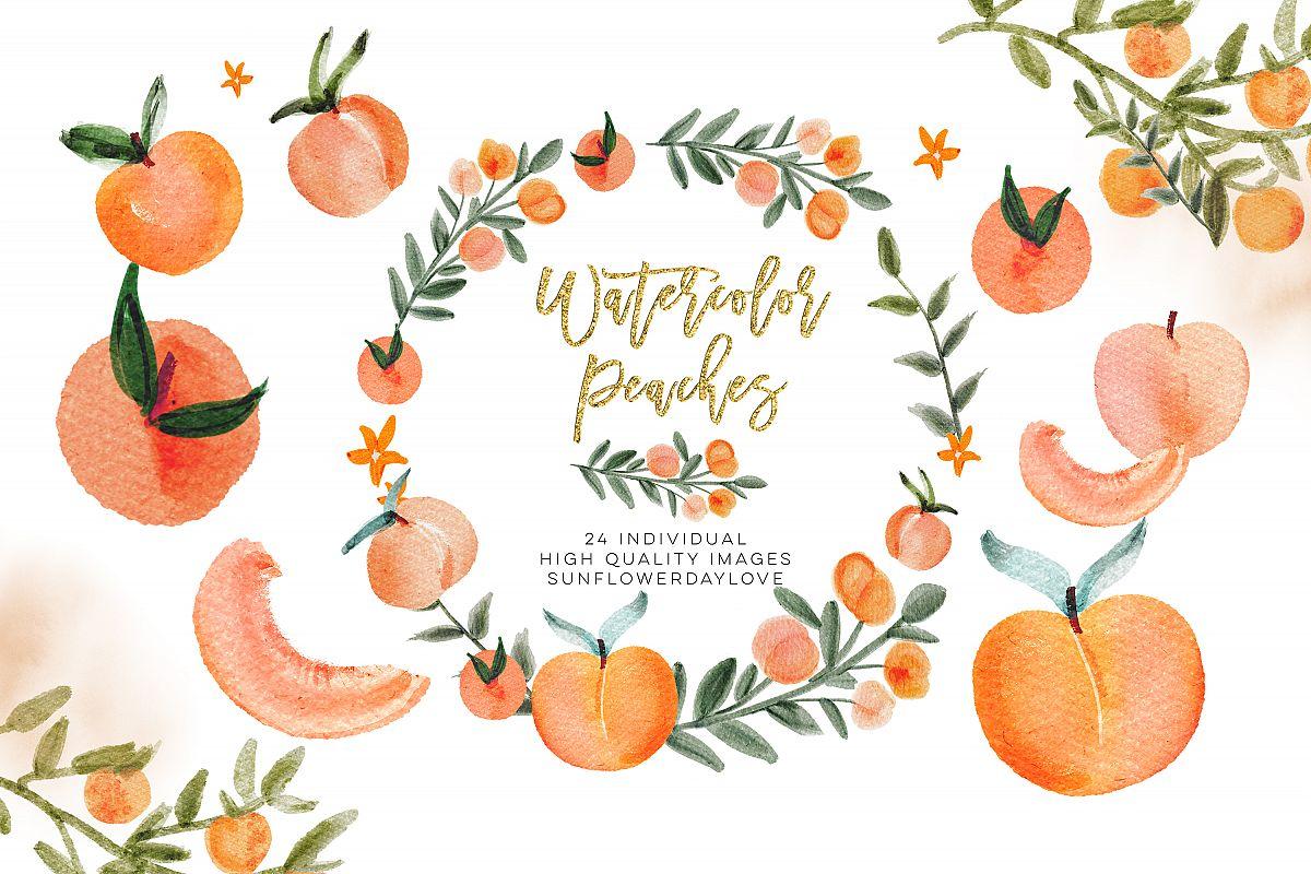 Watercolor Peach Clip Art, Peach leaves Clipart.