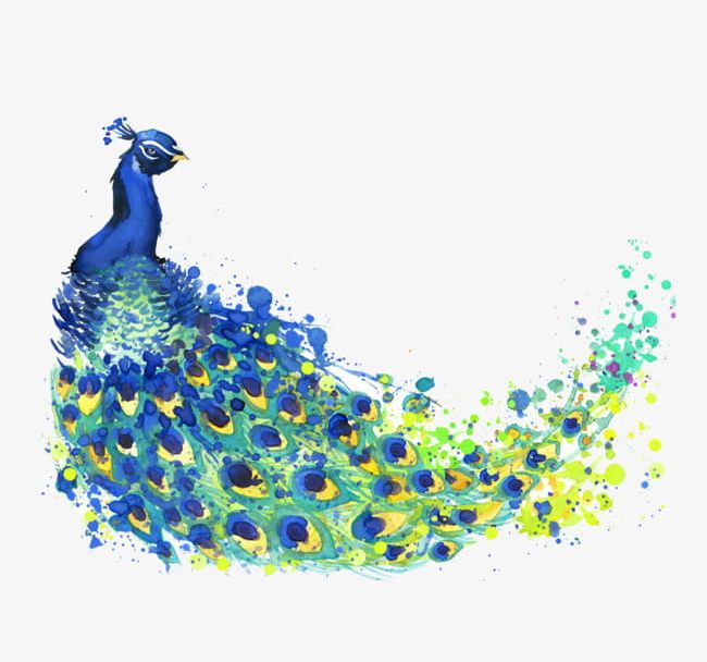 Watercolor Peacock PNG, Clipart, Color, Flower, Peacock.