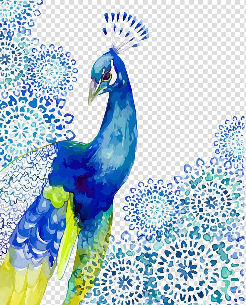 Blue and green peacock illustration, Watercolor painting.