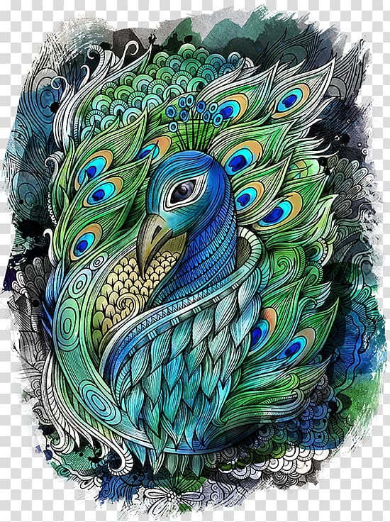 Green and blue peafowl illustration, Drawing Watercolor.