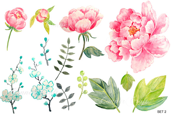 Free Watercolor Peonies Png, Download Free Clip Art, Free.