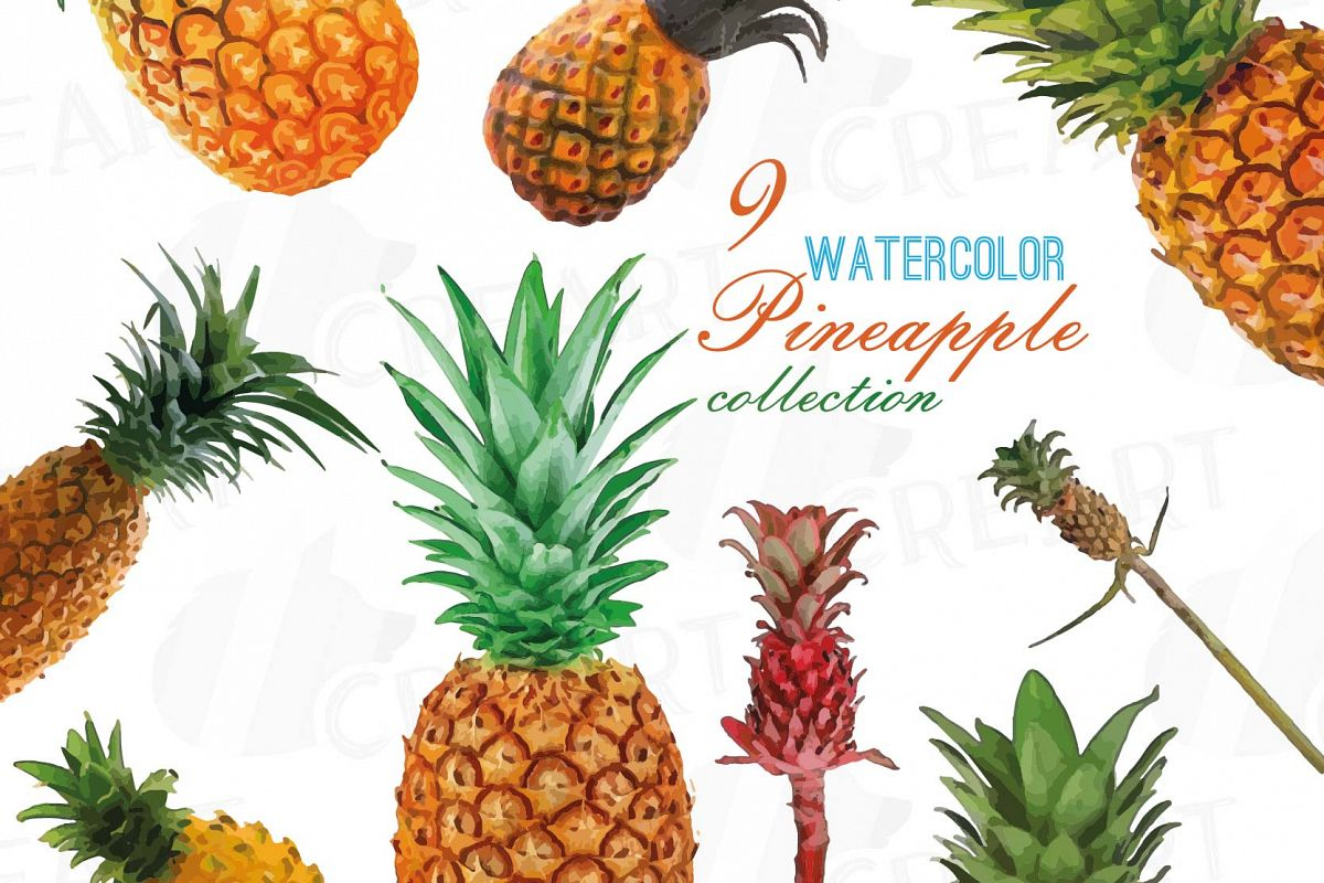 Watercolor Pineapple clip art pack, watercolor ananas clip art exotic  fruit, Printable png, pdf, jpg, svg, eps and vector files included..