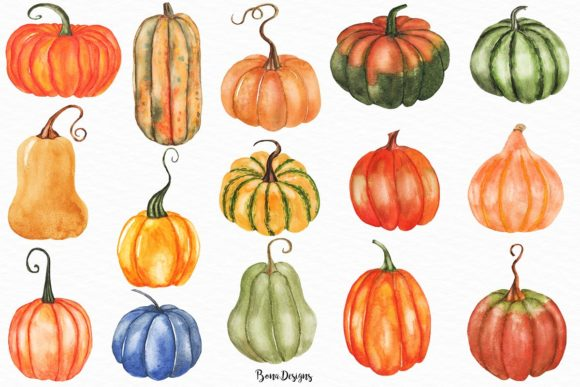 Watercolor Pumpkin Clipart Set.