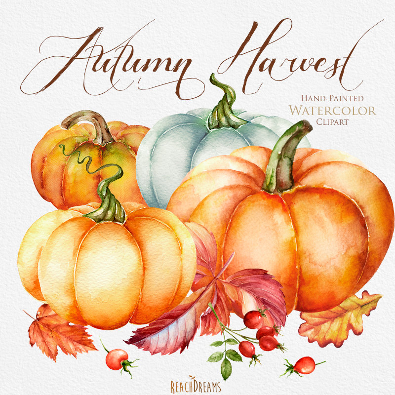 Pumpkin watercolor clipart Halloween Autumn Briar Yellow.