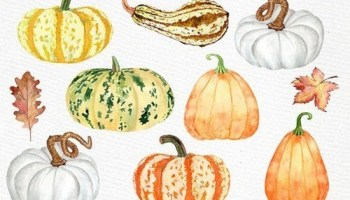 Watercolor pumpkin clipart 779094 Free Download.