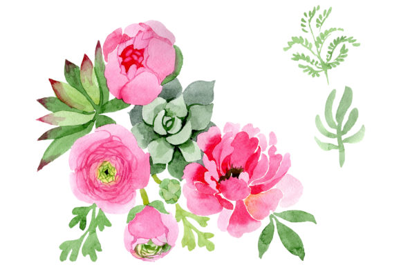 Flowers Ranunculus Watercolor.