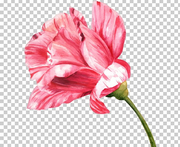 Flower Watercolor Painting Drawing Bud PNG, Clipart.