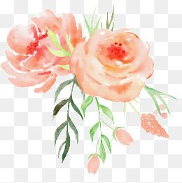 Watercolor Flowers PNG Images in 2019.