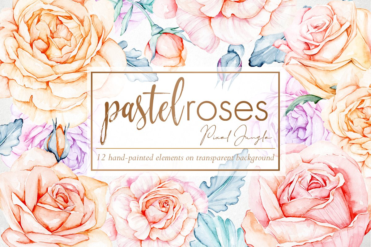 Watercolor roses clipart.