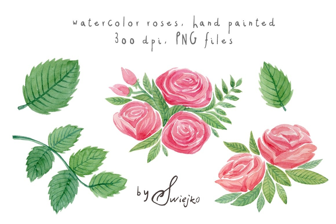 Watercolor Roses Clipart Set #7.