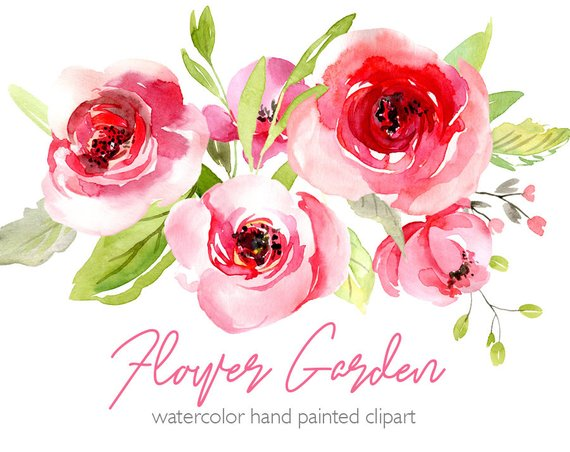 Watercolor Flowers Clipart Pink Blush Red Light Florals.