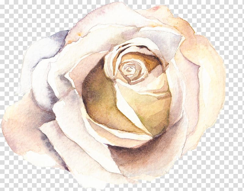 Watercolour Flowers Watercolor painting, watercolor rose.