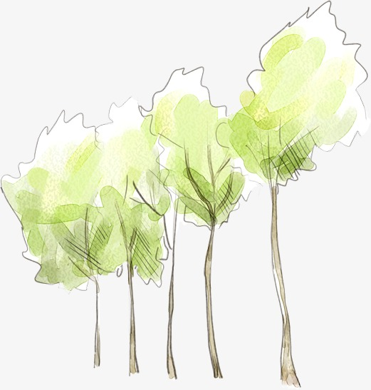 Fresh Hand Painted Watercolor Tree, Watercolor Clipart, Tree.