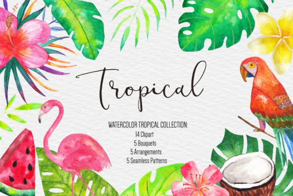 Watercolor Tropical Clipart Illustration.