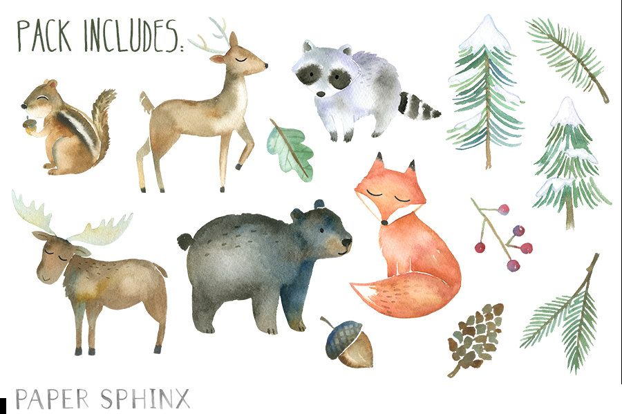 Watercolor Forest Animals at GetDrawings.com.