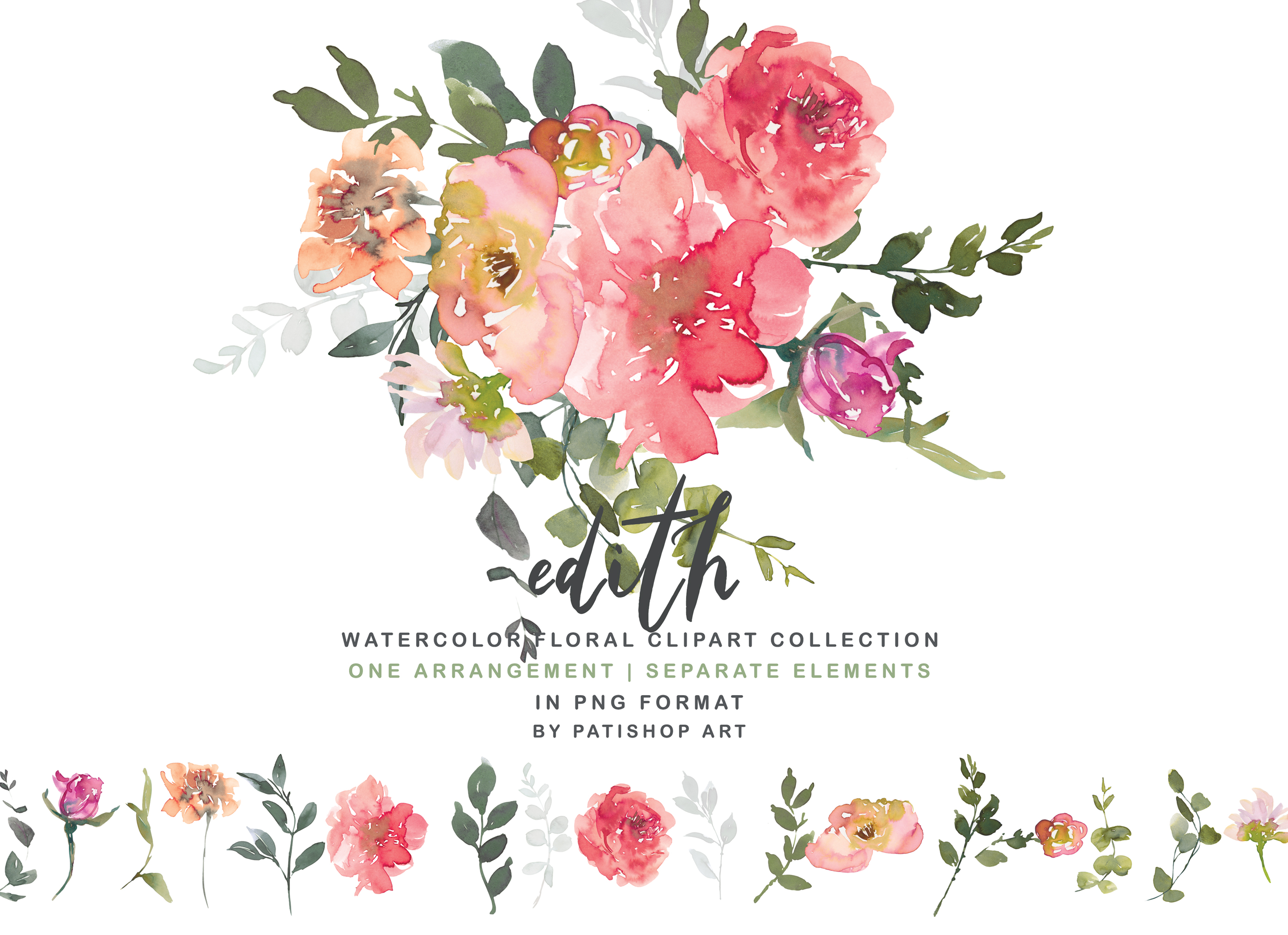 Blush Red Watercolor Peony Clipart Collection.