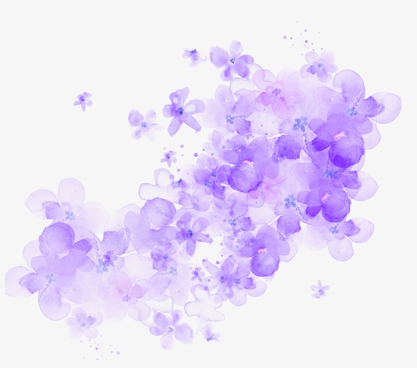 Free Png Download Cherry Blossom Watercolor Flower.
