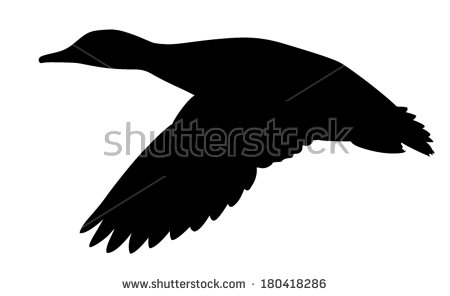 Flying duck silhouettes free vector download (6,447 Free vector.