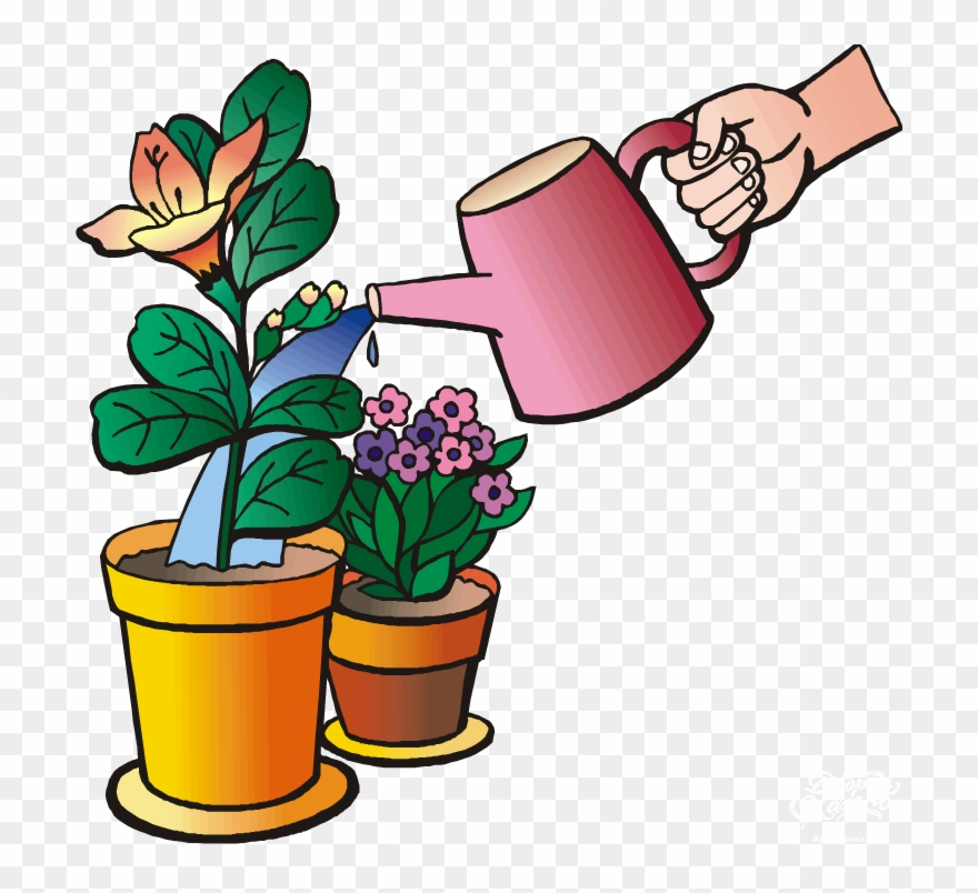 Water Plants Clip Art.