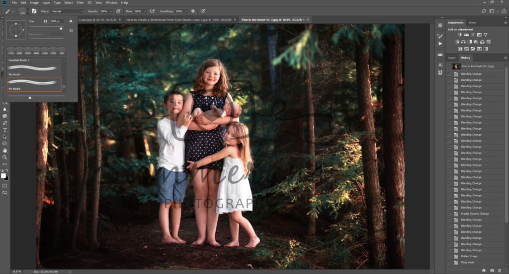 How to create a watermark in Photoshop to protect your.
