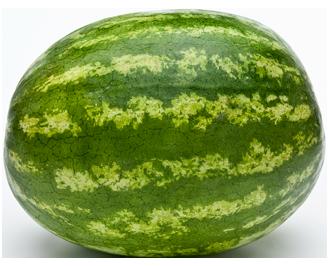 Watermelon PNG Transparent Images.