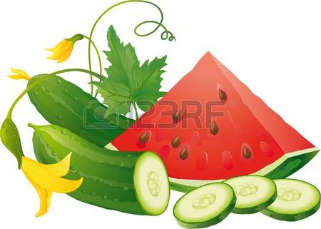 3,806 Green Melon Cliparts, Stock Vector And Royalty Free Green.