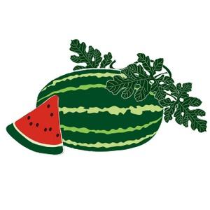 Melon Clipart Image.