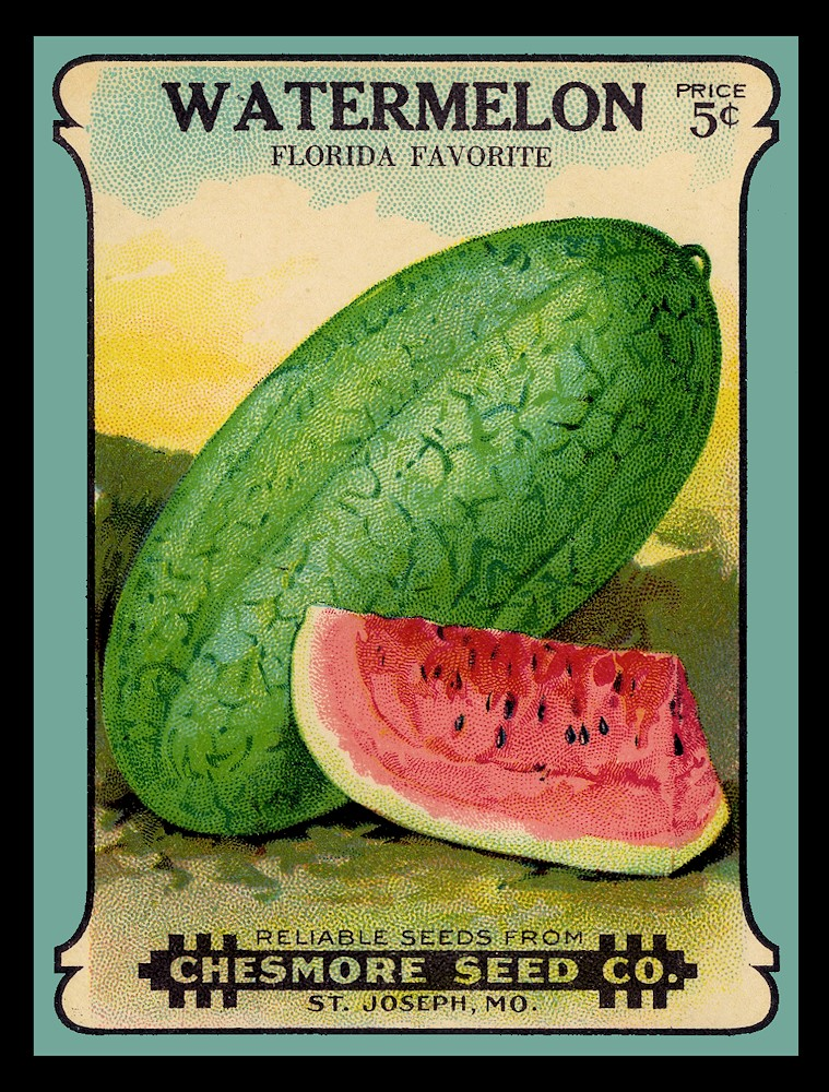 Florida Watermelon Seed Pack Refrigerator Magnet FREE US.