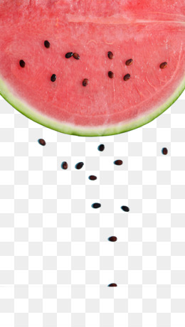 Watermelon Seed PNG.